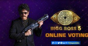Bigg Boss online voting